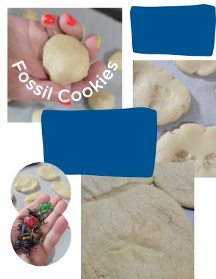 Fossil Cookies - Arts and Crafts Are Important for Kids All the Time