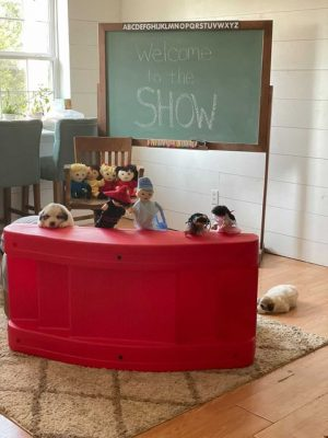Puppet Shows for Social Emotional Learning